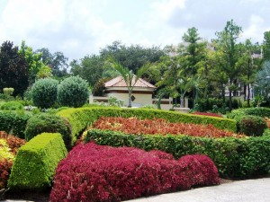 Hollis Garden in beautiful Lakeland FL