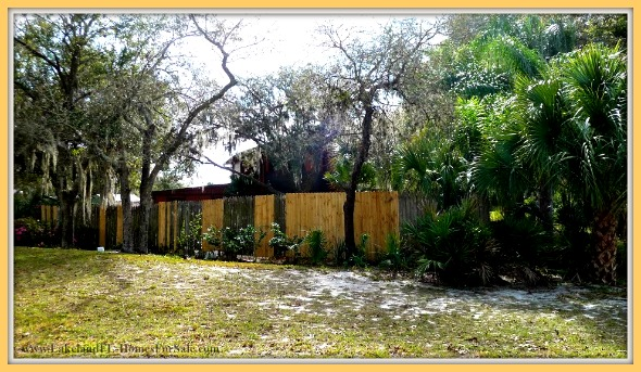 Have fun with outdoor activities in the fenced backyard of this lovely Lake Wales FL home for sale.