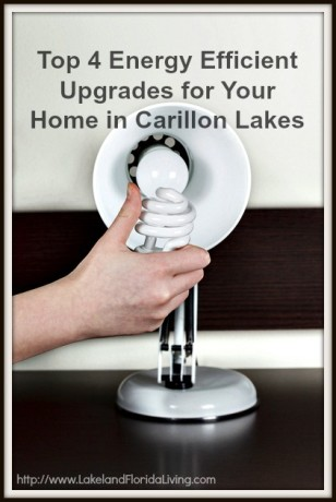 Check out some tips that will make your Carillon Lakes community home more energy efficient this Summer!