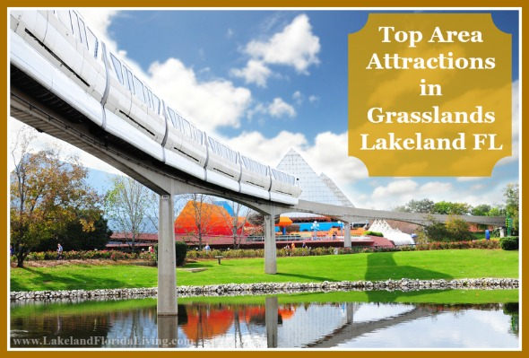 Take a peek at these top destinations to visit in Grasslands Lakeland FL.