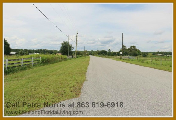 Enjoy accessibility when you buy this home for sale Kathleen FL.