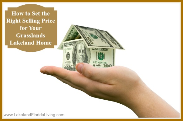Attract more potential buyers and get the best price for your Grasslands Lakeland FL home with these amazing tips.